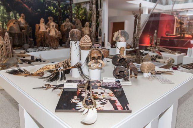 Schulklassen im Evolutionsmuseum